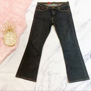 AG Adriano Goldschmied Angel Dark Flare Jeans 32R